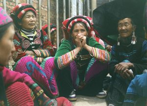 matrilinearidade